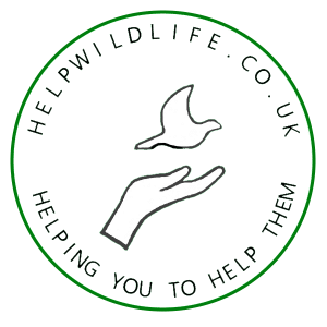 | HelpWildlife.co.uk Helping you to help them